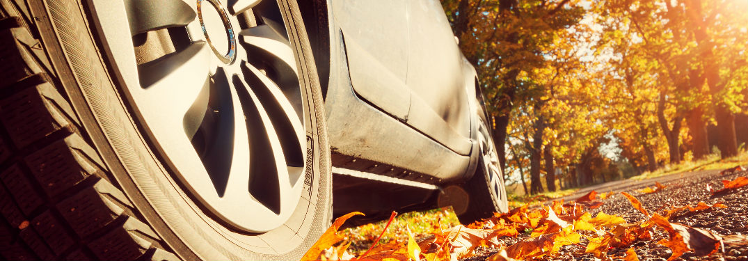 Close up of a vehicle tire on a road with fall leaves