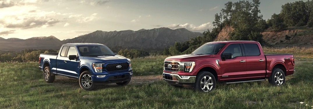 2021 Ford F-150 models in field