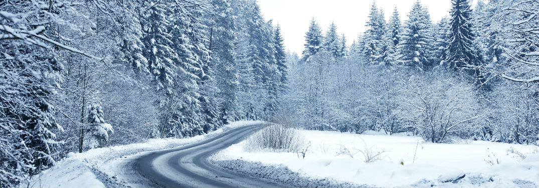 snow covered trees and winding road