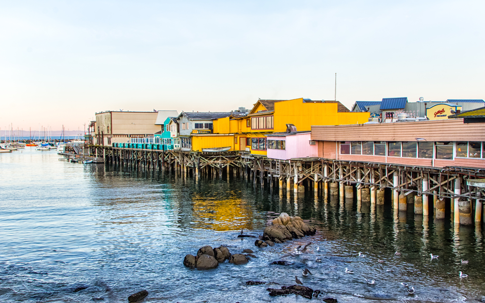 So Much To Do At The Monterey Bay National Marine