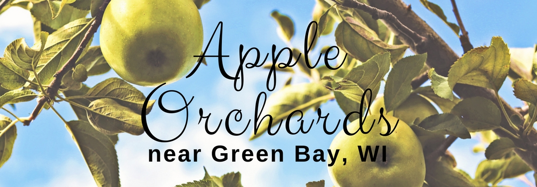 Apple Orchards near green bay wi