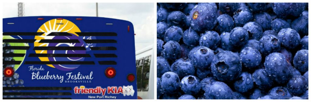 Kia Wesley Chapel >> 2017 Florida Blueberry Festival Event Details and Schedule ...