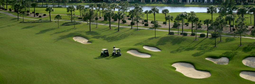 Golf Courses For Tampa Clearwater And St Petersburg Fl
