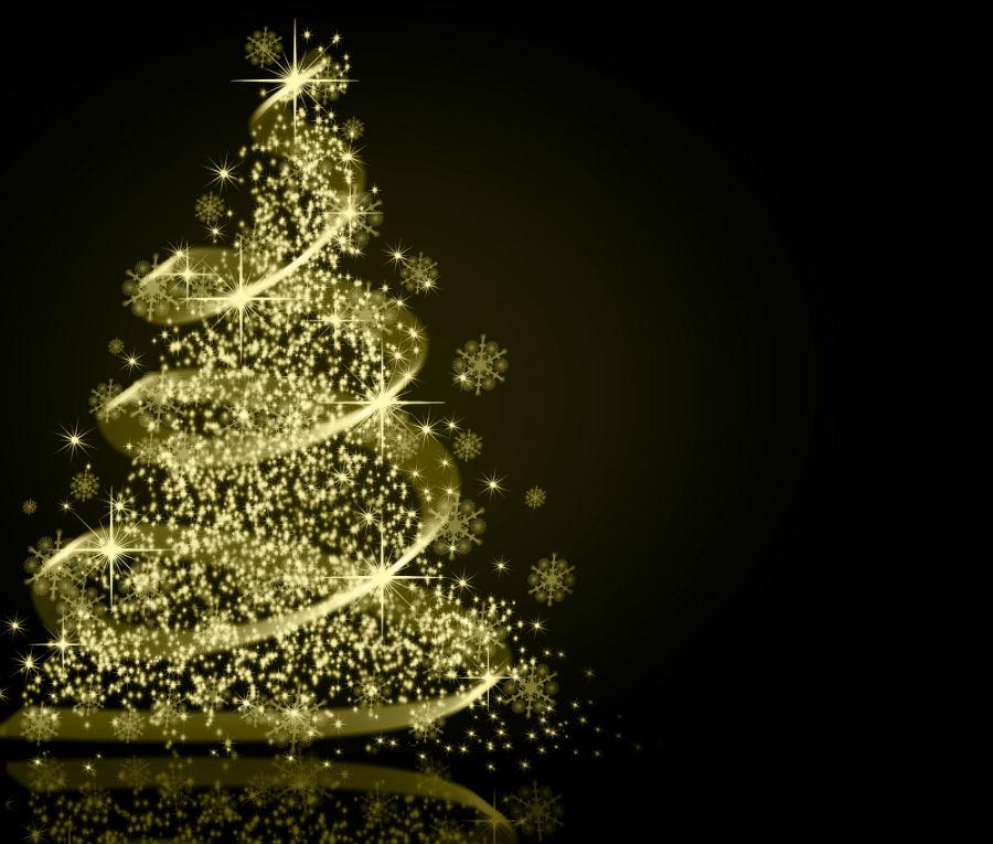 Pasco County Christmas Tree Disposal