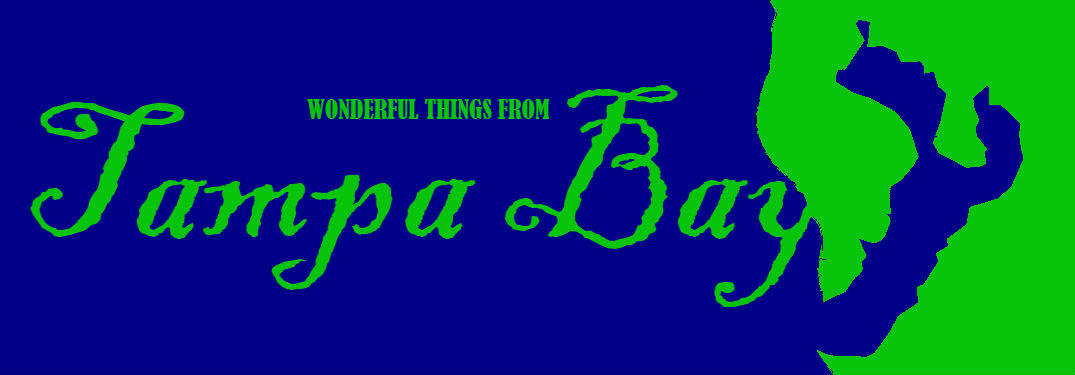 "header image saying ""Wonderful things from Tampa Bay"""