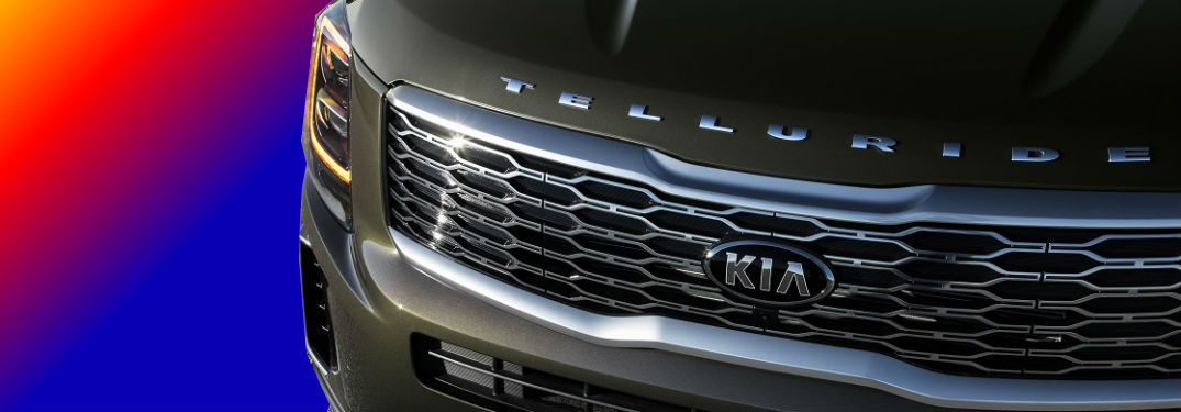 2020 Kia Telluride grille in front of rainbow background