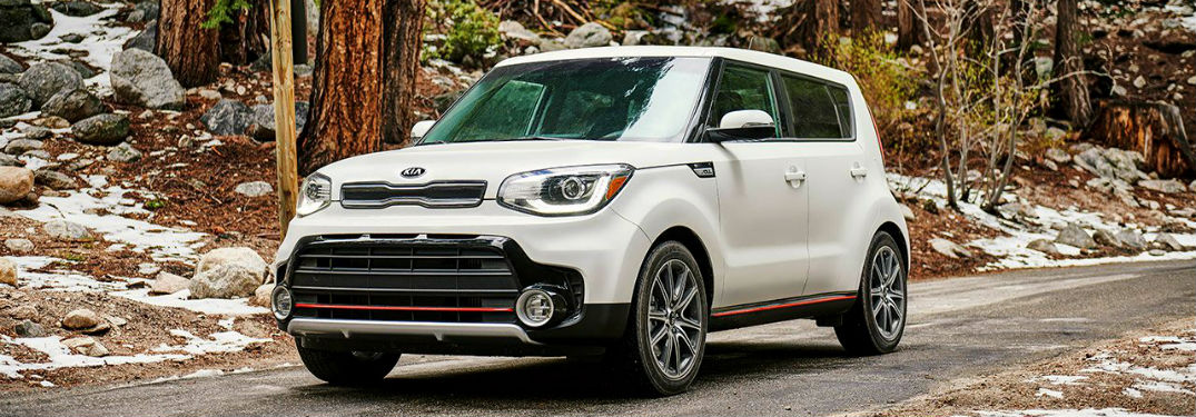white 2019 kia soul in the woods