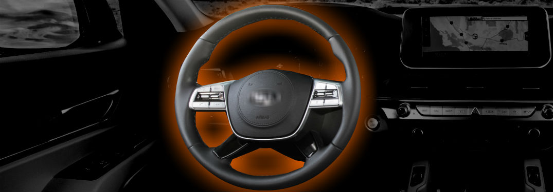 2020 kia telluride steering wheel with blurred badge