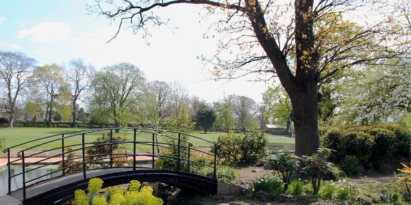 Bridge over stream in park