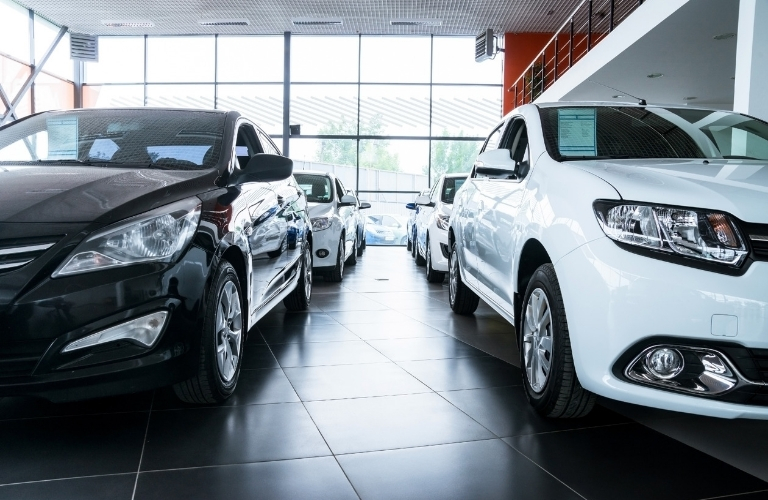 Black and white vehicles in dealership showroom