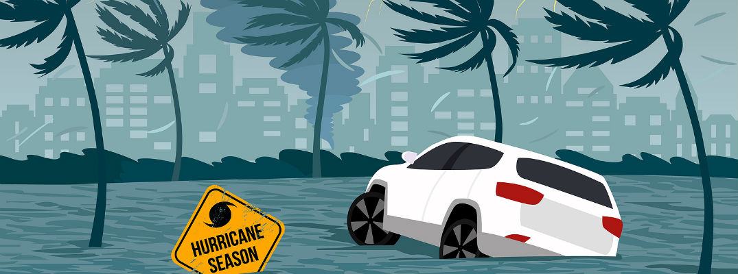 "Vector of White car in water surrounded by palm trees and ""Hurricane Season"" sign"
