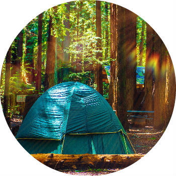 Tent In The Woods B Western Slope Toyota
