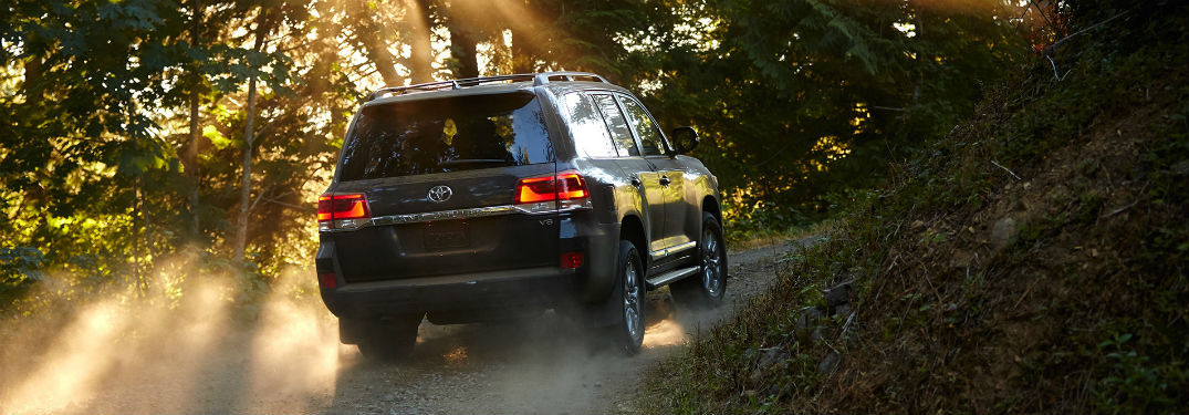 2019 Toyota Land Cruiser exterior back fascia and passenger side in woods with sunlight and dust