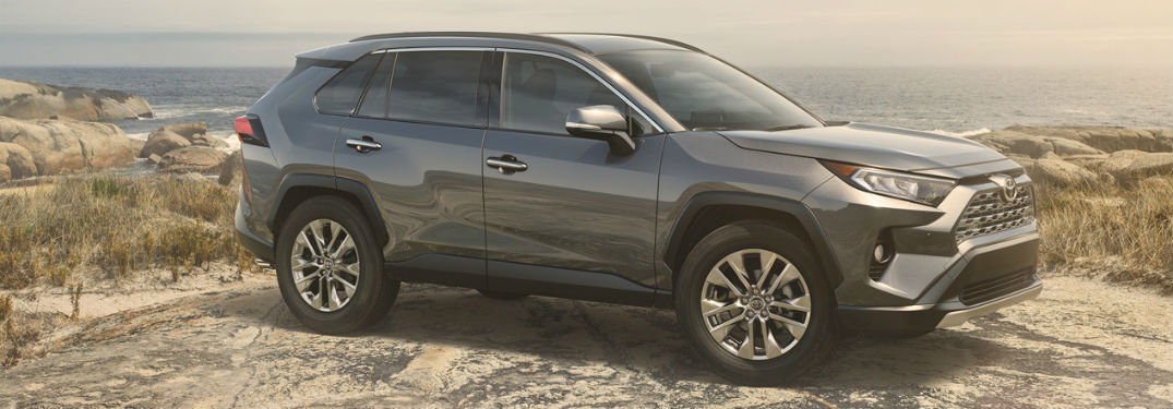 2019 Toyota RAV4 exterior front fascia and passenger side on dirt hill overlooking trees