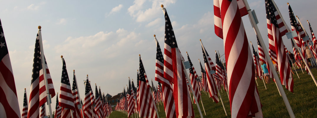 a field of American flags planted in a grass hill ground for a field of heroes on Memorial Day