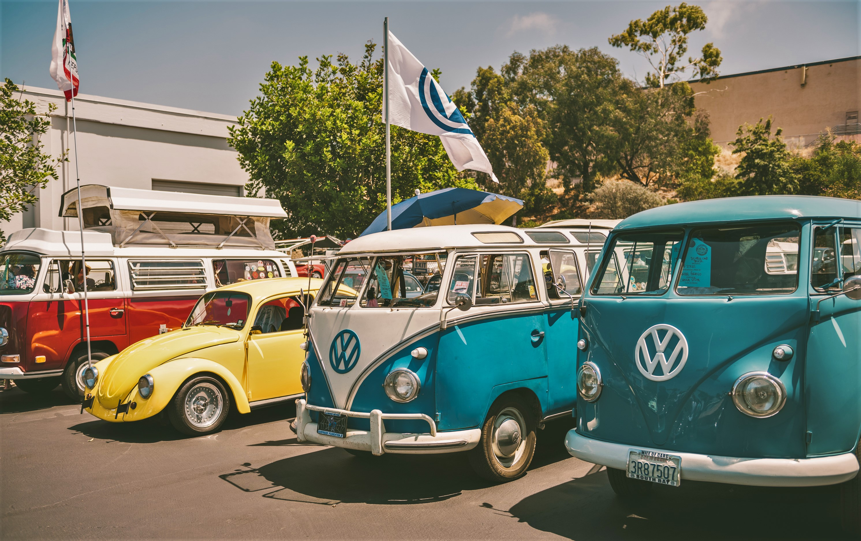 Vintage VW Show at 50th Anniversary