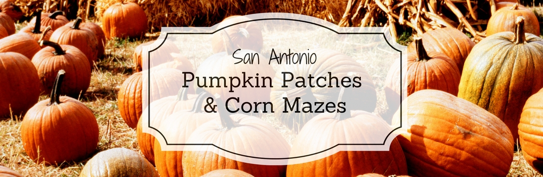 2016 Pumpkin Patches and Corn Mazes San Antonio TX