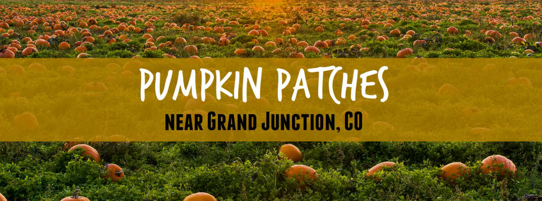 pumpkin patches junction city ks