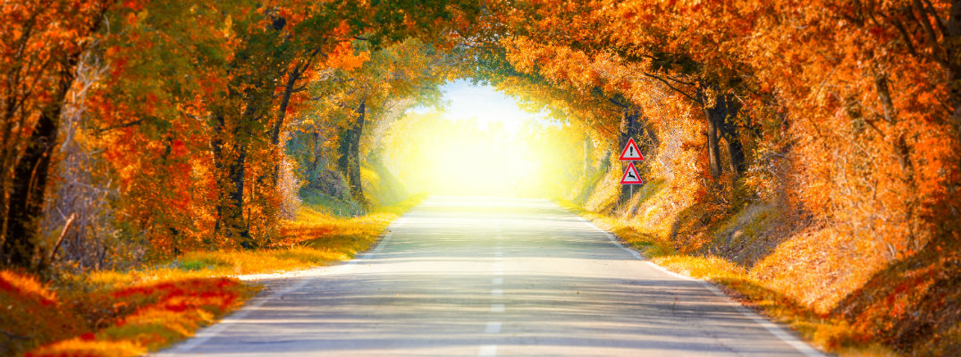 How to Prepare Your Vehicle for Fall Weather