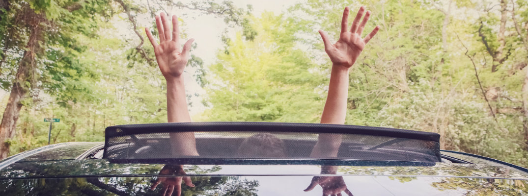 Hands raised out of a sunroof