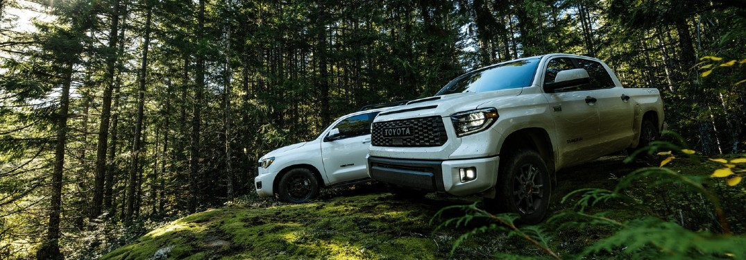 2020 Toyota Sequoia and 2020 Toyota Tundra TRD Pro models