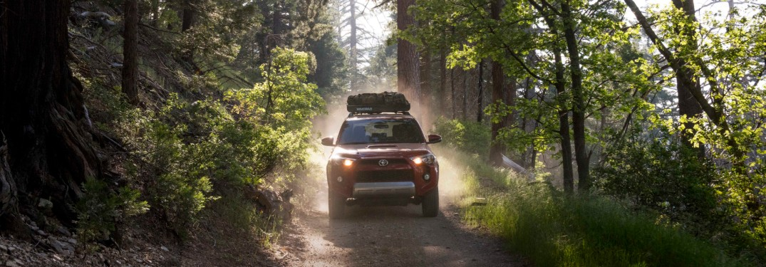 2017 Toyota 4Runner in woods