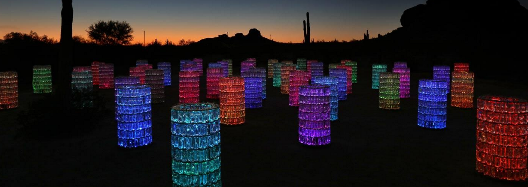 Bruce Munro Sonoran Light at the Desert Botanical Gardens