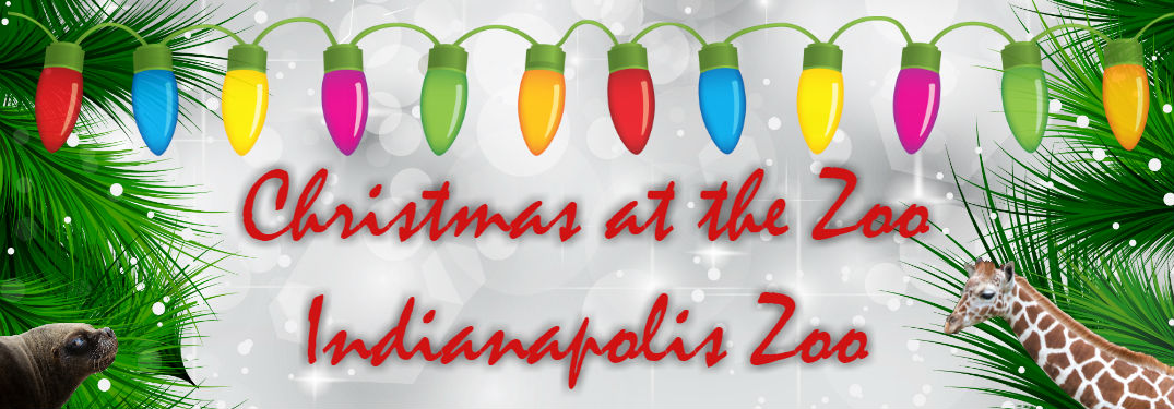 Have a whimsical winter celebration at the Indianapolis Zoo!