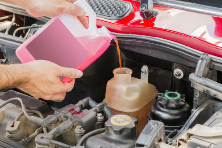 person pouring engine coolant into car