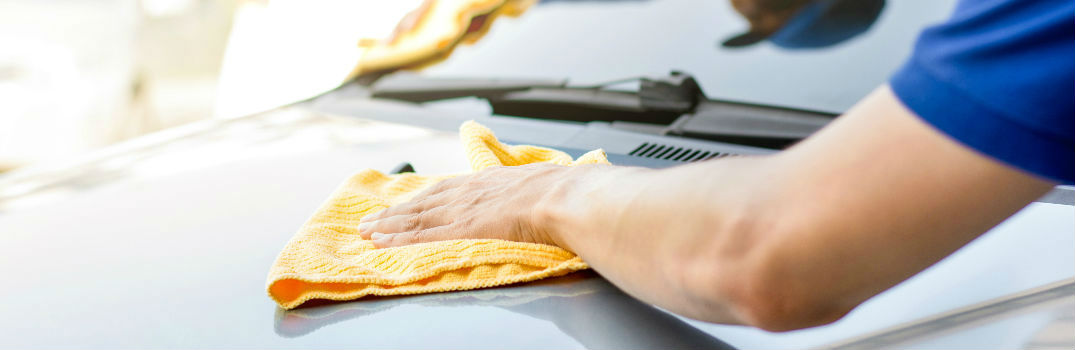 person washing and detailing a car