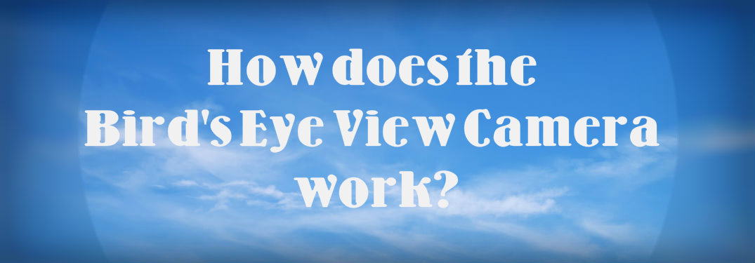 How does the birds eye view camera work