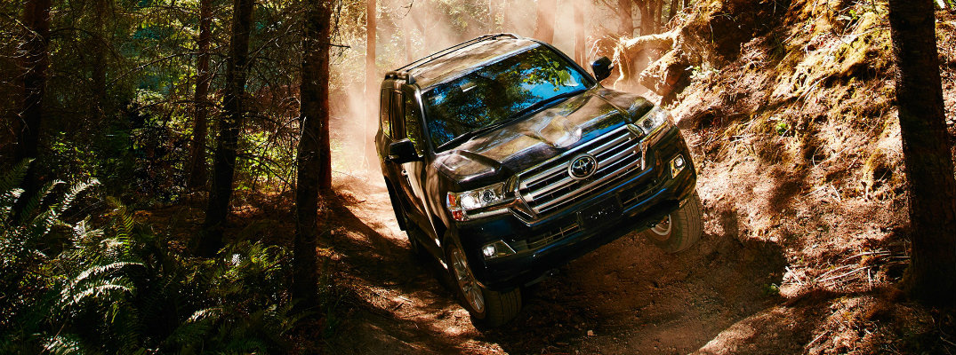 Front view of 2019 Toyota Land Cruiser driving down wooded area