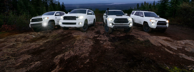 Group of 2020 Toyota Sequoia vehicles