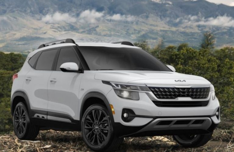 A white 2022 Kia Seltos Nightfall Edition with black roof rails and alloy wheel parked in the great outdoors overlooking a mountain