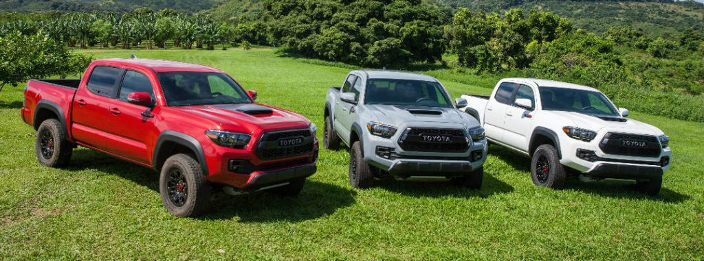 Choose from 2017 Toyota Tacoma Color Options