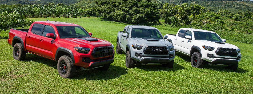 Toyota Tacoma Colors >> Choose From 2017 Toyota Tacoma Color Options