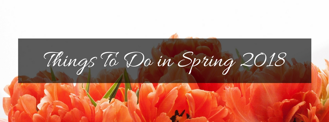 Orange Flowers on a White Background with Black Text Box and White Things To Do in Spring 2018 Text