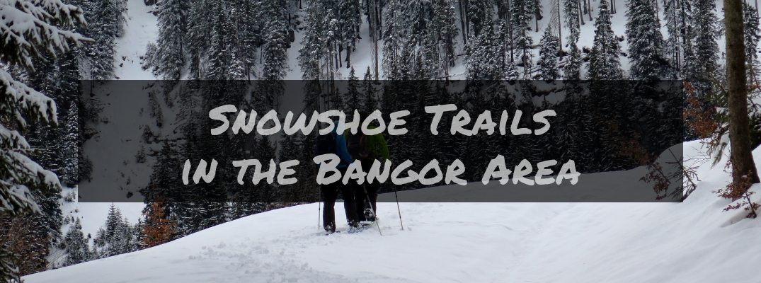When and Where Can You Go Snowshoeing Near Bangor ME?