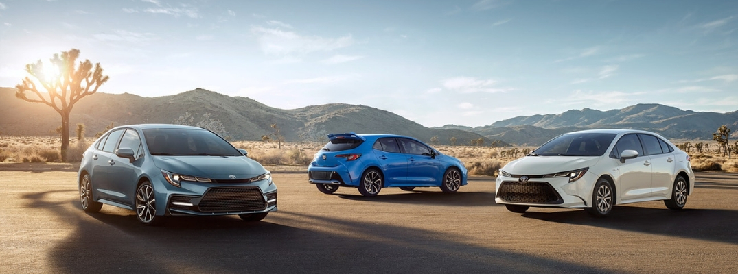 Celestite Gray Metallic and Blizzard Pearl 2020 Toyota Corolla Models in the Desert and a Blue 2019 Toyota Corolla Hatchback