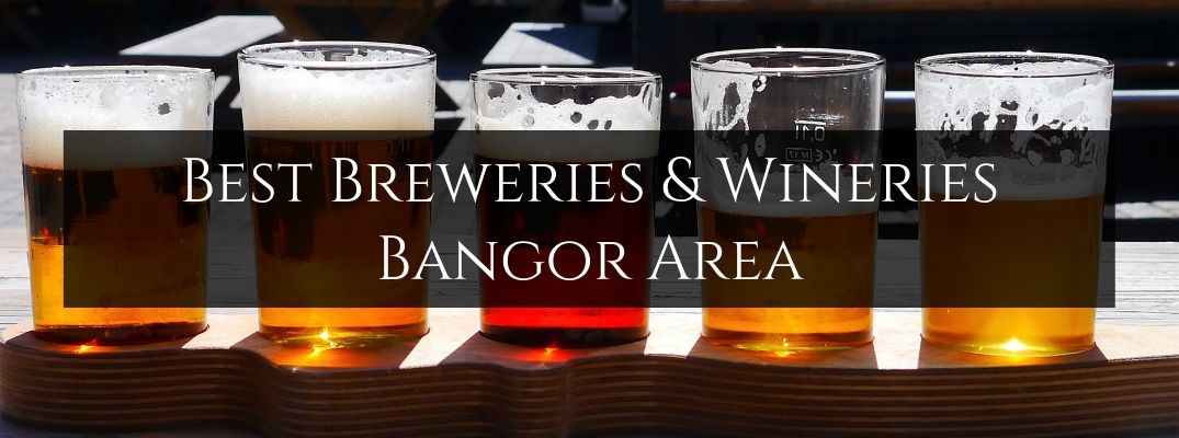 Take a Tour at Your Favorite Local Winery or Brewery in Bangor ME