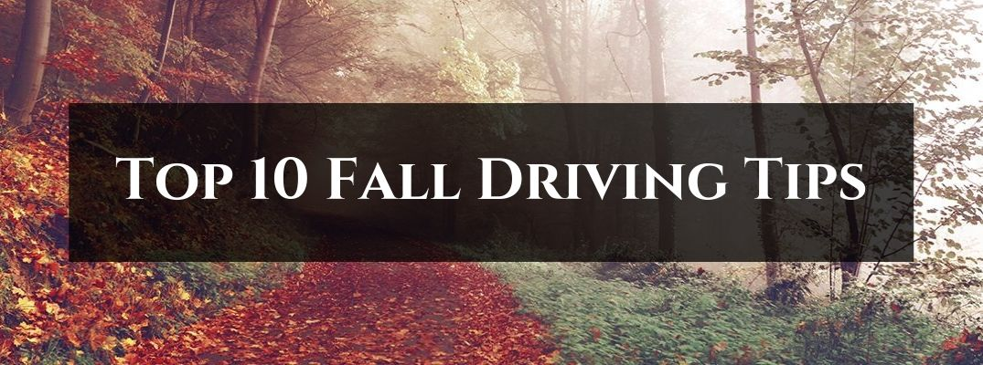 Trail Covered in Fall Leaves with Black Rectangle and White Top 10 Fall Driving Tips Text