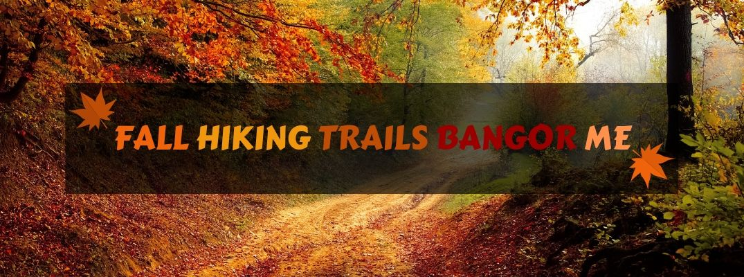 Fall Hiking Trail in the Woods with Black Text Box and Fall Hiking Trails Bangor ME Text in Fall Colors with Orange and Brown Graphics of Leaves