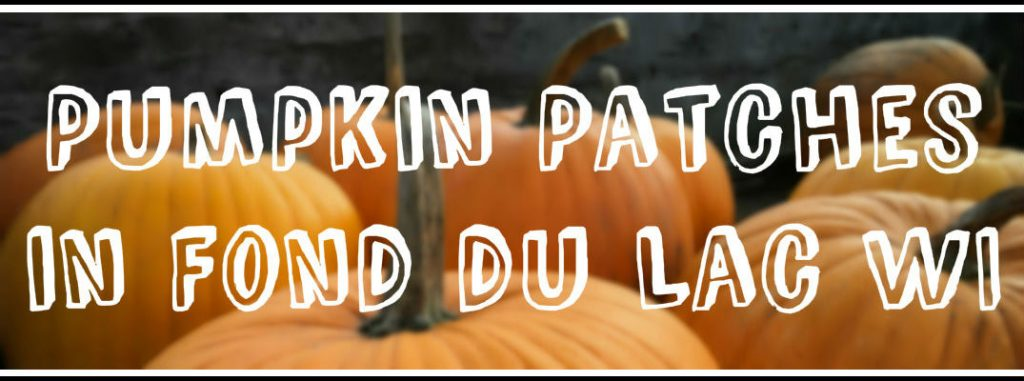 pick your own pumpkin patches in fond du lac county. Black Bedroom Furniture Sets. Home Design Ideas