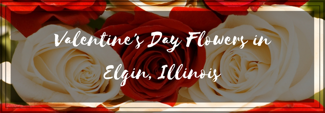 Best Florists in Elgin, IL, for Valentine's Day
