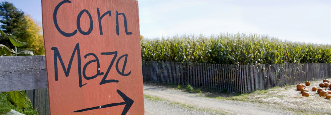 Best Corn Mazes near Hickory, NC with image of a sign pointing to a corn maze