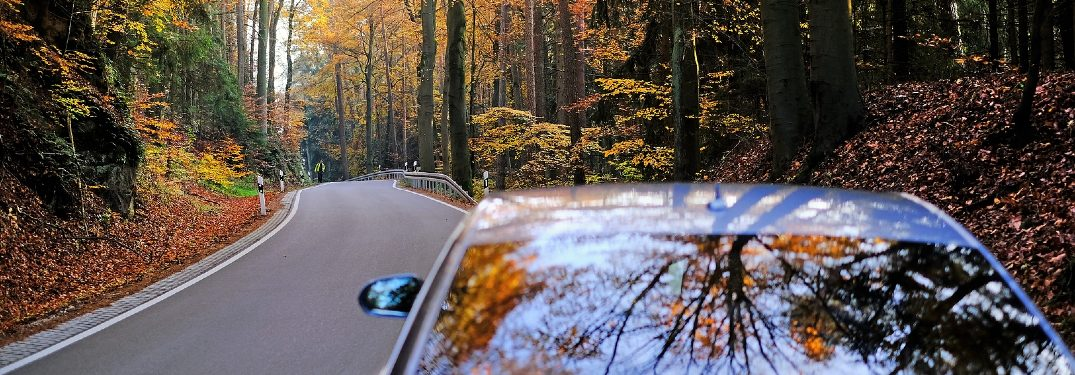 car driving down autumn road
