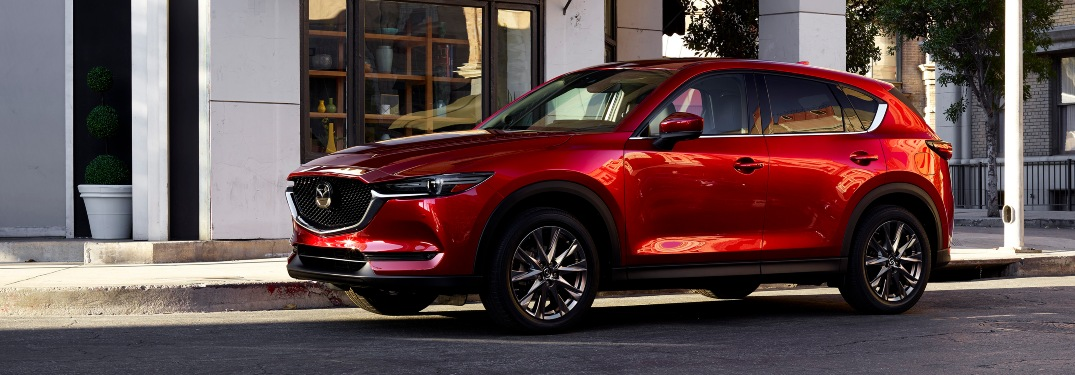 How to reset maintenance light in Mazda CX-5?