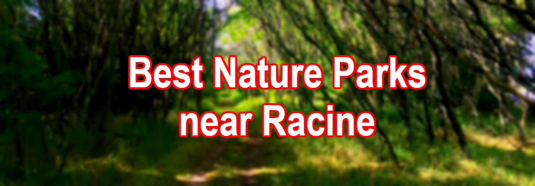 woodland scene with text imposed that says best nature parks near racine
