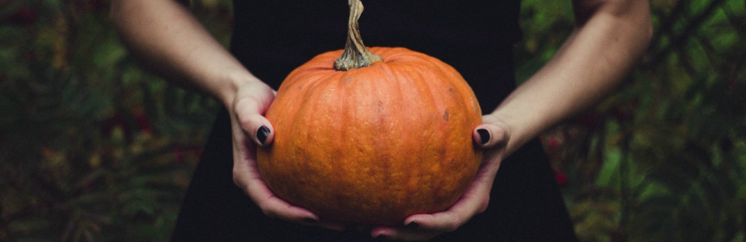 Two hands holding a pumpkin.