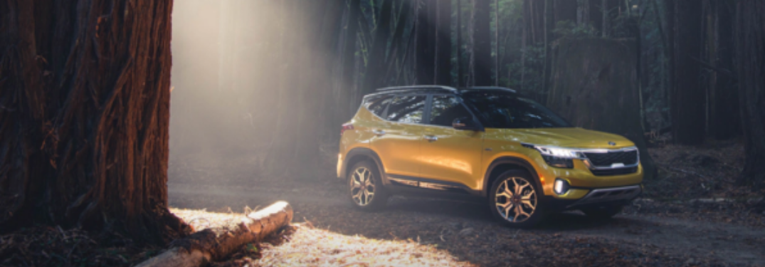 2021 Kia Seltos parked outside in woods